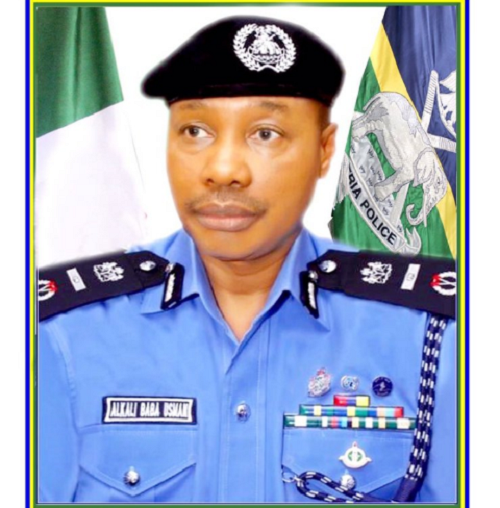 President Buhari Appoints Alkali Baba as Acting IGP